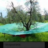 Olivspeed  Vari