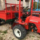 Motoagricola Goldoni Transcar w40 rs