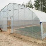 7 tunnel agricoli  Professionali serra
