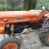 Trattore Fiat  250