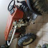 Trattore Fiat  55-66 dt frutteto