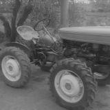 Trattori d'epoca Fiat 251r montanina calzolari