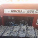 Trattore cingolato Fiat 665 c montagna