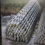 50 pali  Da vigna in cemento armato