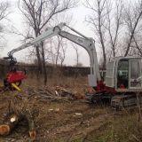 Escavatore abbattitore  Takeuchi tb175 con pinza mecanil