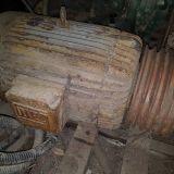 Generatore trifase  Weg 50 hp
