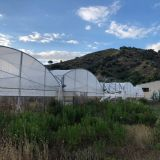 Serre  2 ettari di serre usate per agricoltura