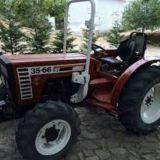 Trattore frutteto Fiat 35/66