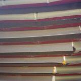 Copertura nuova  pannelli coibentati curvi