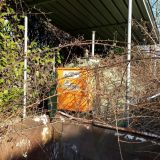Cisterna diesel  San marco 5000 litri