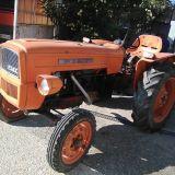 Trattore Fiat  215 frutteto