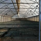 Serra usata  12x28 struttura a tubi zincati
