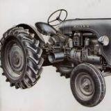 Cerco trattore Lamborghini Prima del 1965