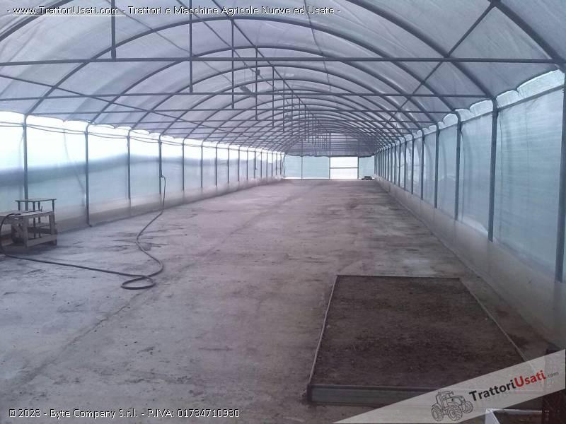 Serra 8x50 metri for Serre professionali usate