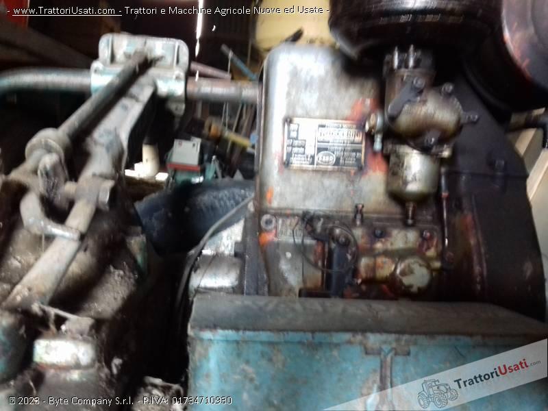 Foto Annuncio Sgadora valpadana - 10 hp d'epoca