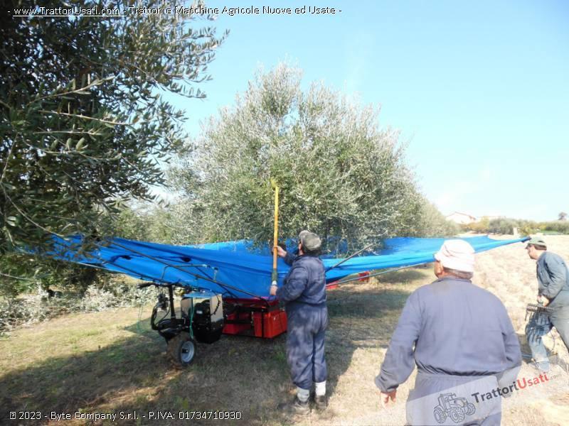 Foto Annuncio Abbacchiatore  - ombrello olivespeed go plus bosco