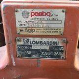 Foto 3 Motozappa lombardini - pasbo g84