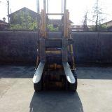 Foto 3 Muletto  - diesel 3 cilindri