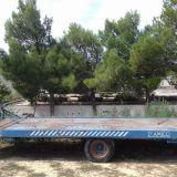 Foto 1 Trattore landini - 10000