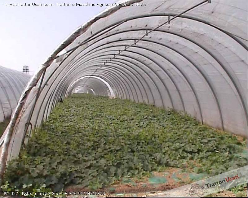 Archi per serre tunnel fredde in tubo zincato for Serre tunnel usate