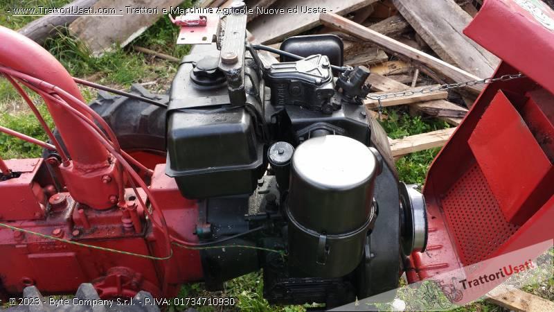 Motocoltivatore bertolini con rimorchio for Motocoltivatore usato lazio