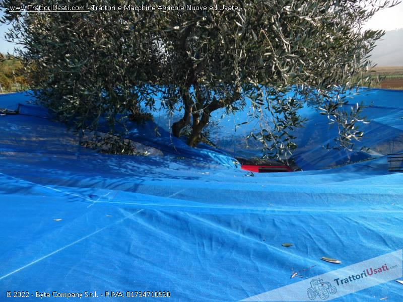 Abbacchiatore  - ombrello olivespeed go plus bosco 1