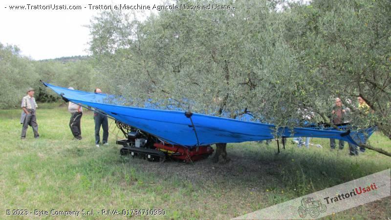 Abbacchiatore  - ombrello olivspeed climb 0
