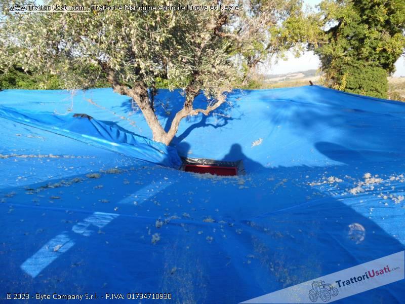Intercettatore per olive  - olivspeed 4x4 bosco 2