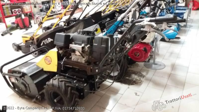 Trinciasarmenti  - tsr 110 swing ecotech 0